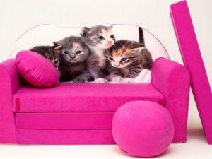 Dětská pohovka Koťátka - růžová