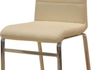 Jídelní židle DOROTY NEW - béžová