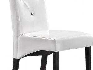 Jídelní čalouněná židle C-121 venge/bílá