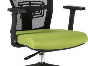 Office Pro Kancelářská židle THEMIS BP - TD-20