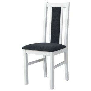 Jídelní sconto jídelní židle bols 14 tmavě šedá/bílá - židle na SEDI.cz