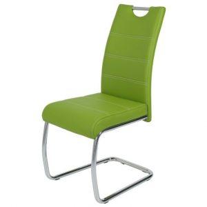 Jídelní sconto jídelní židle flora s zelená