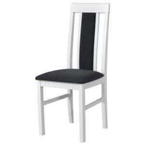 Jídelní sconto jídelní židle nila 2 tmavě šedá/bílá - židle na SEDI.cz
